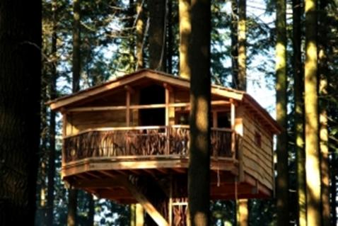 Cabanas En Los Arboles Nuevo Complejo En El Pais Vasco Blog Eraikal - Cabaas-de-madera-en-arboles